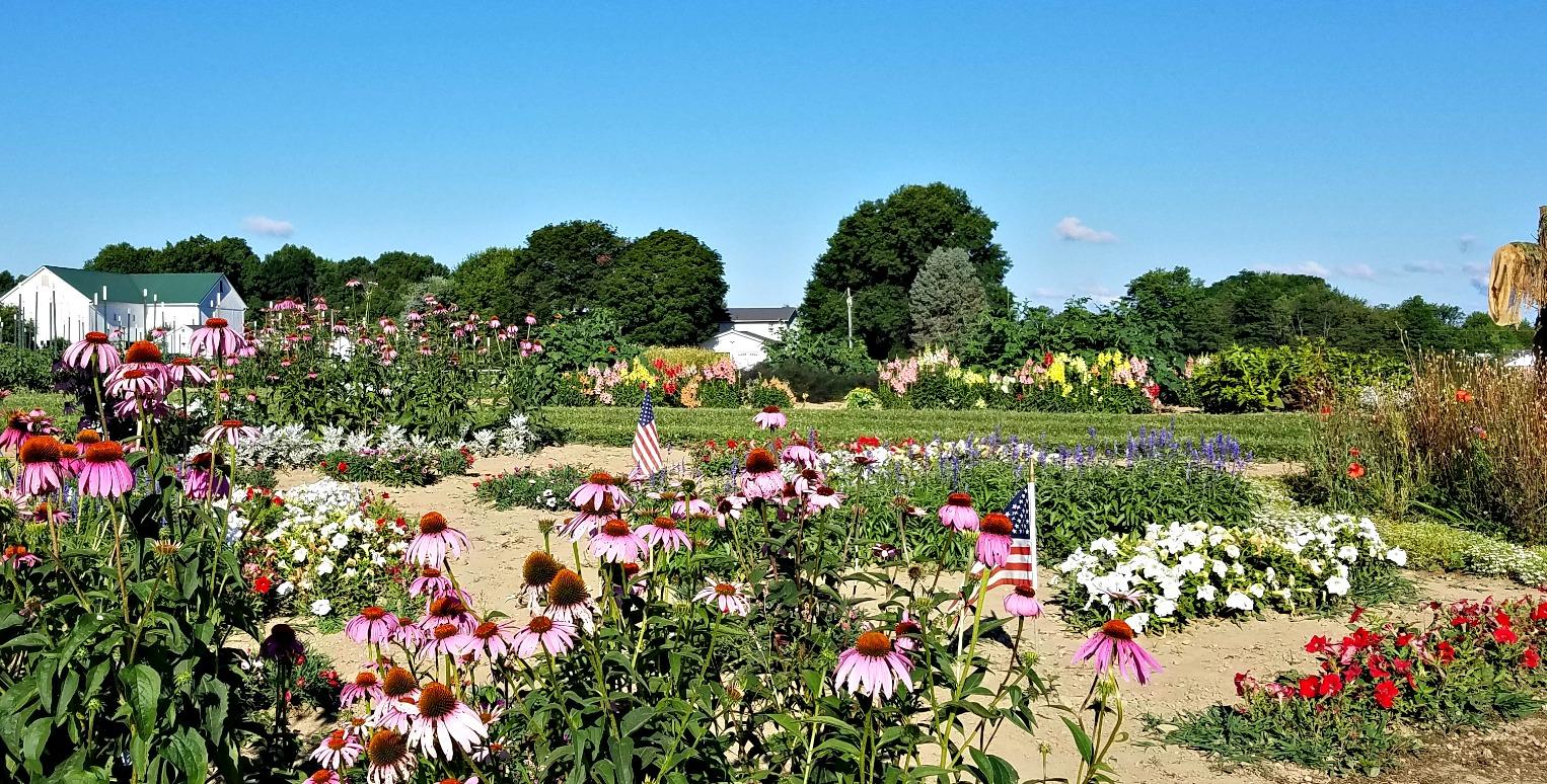 Pegasus%20Farm%20Veteran's%20Garden - Pegasus Farm Country Store And Gardens